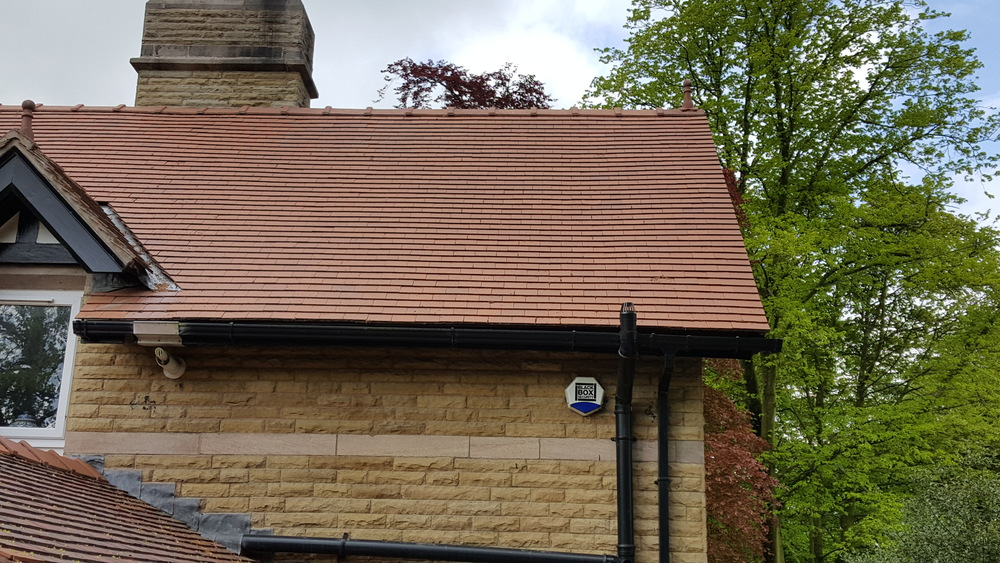 Red clay tile roof on a 4 year old detached property in Withnell near Chorley. Prolific green algae growth all over. after Softwash treatment.