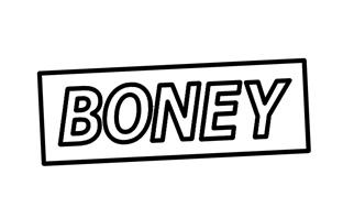 Boney_cookiewebupdate_2.jpg