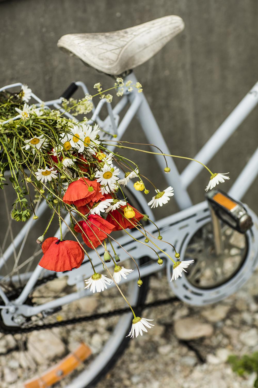 blommor5205.jpg