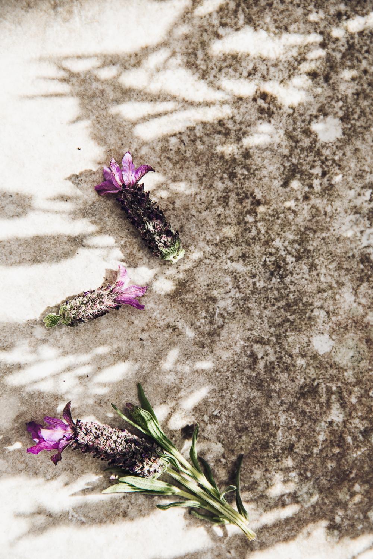 Lovely Lavender AMU Foto Emily Dahl-5.jpg