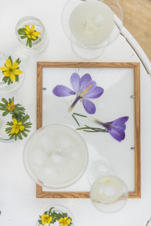 blommor232A5255.jpg