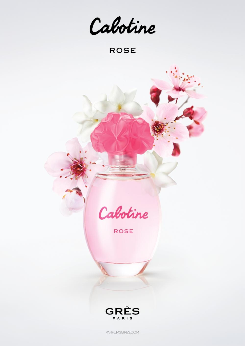 CABOTINE_CADRAGES_ROSES2.jpeg