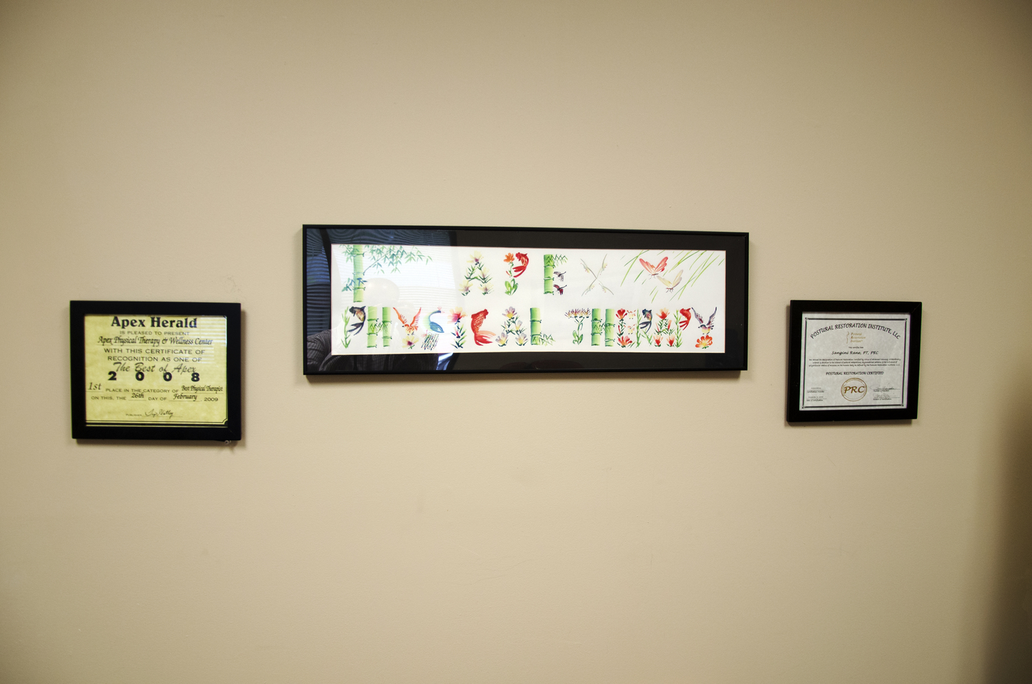 Board nc physical therapy - Apex Pt Postural Restoration Center