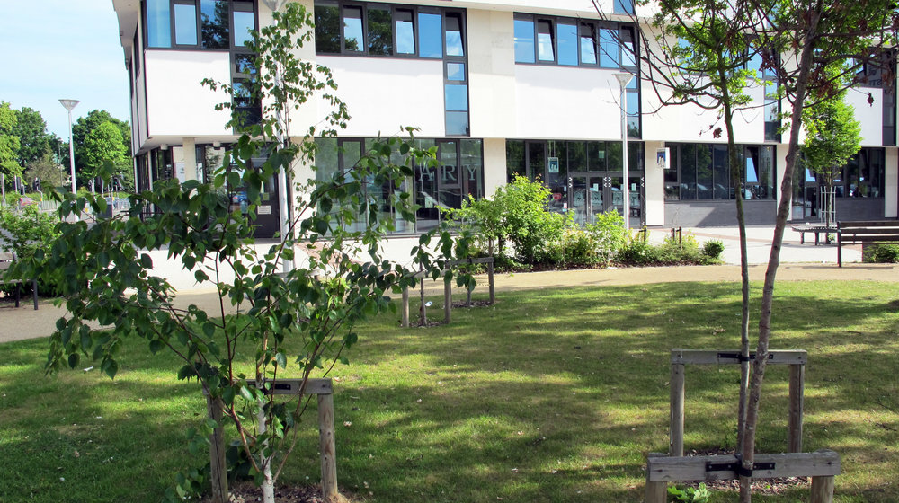 crawley library9.jpg
