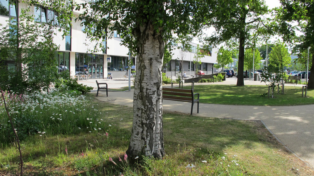 crawley library8.jpg