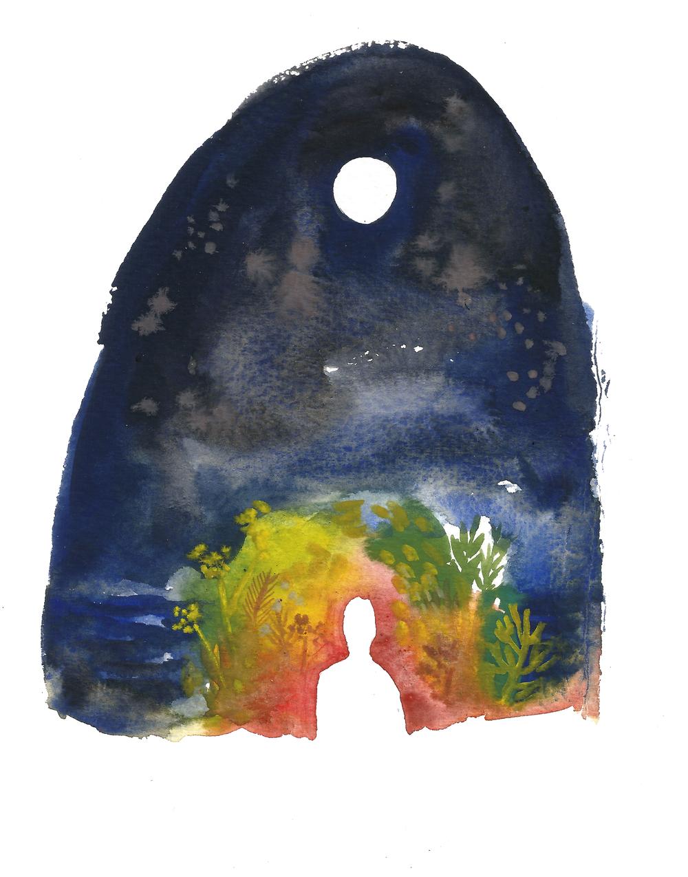 solhund (night-warmth)