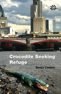 crocodile-seeking-refuge.jpg