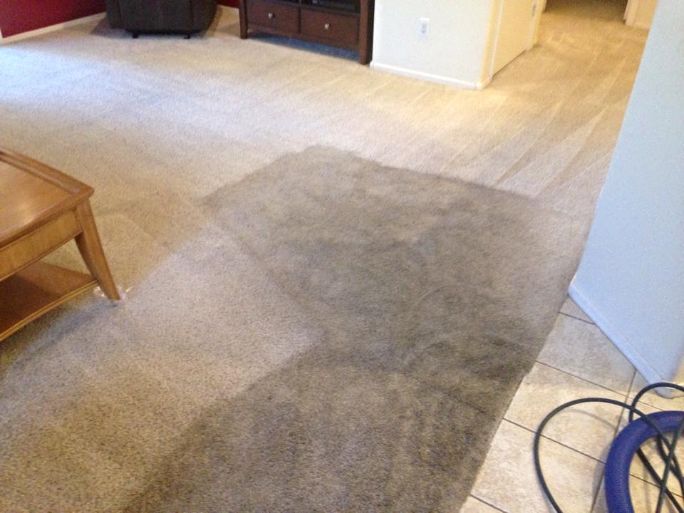 Image result for Carpet cleaning Peoria az