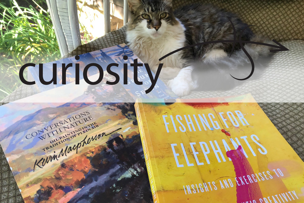 2018_06 Catalysts for Curiosity - Reading.jpg
