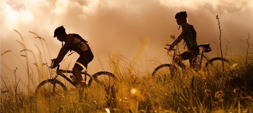 Bike Shop-1.jpeg