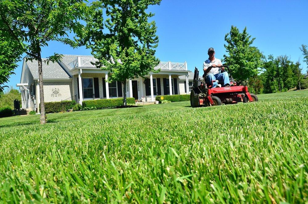 lawn-care-643556_1280.jpg