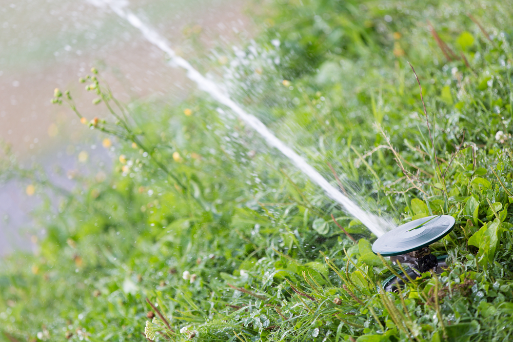 irrigation_service.jpg