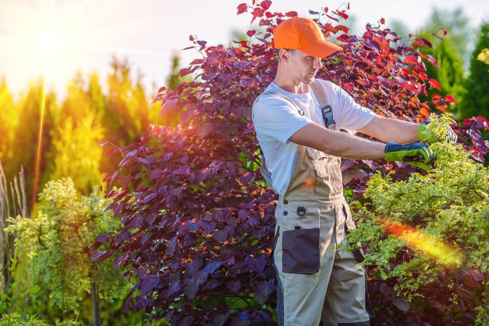 irrigation service okc