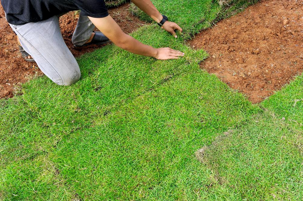 irrigation service okc.jpg