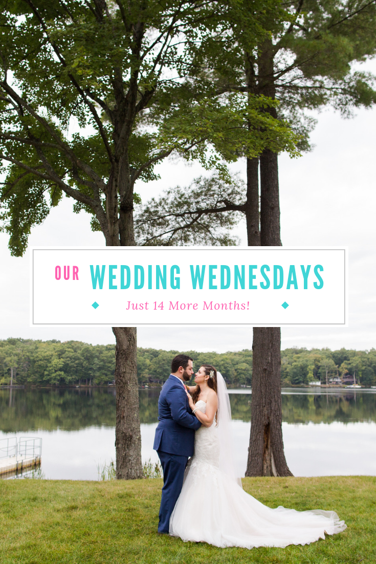 Welcome to Wedding Wednesdays! Once a month I'll be doing an update to show where we are in the wedding planning process and hopefully give some advice along the way. I have some AMAZING news this week that I can't wait to share!