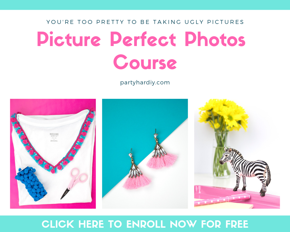 If you're looking to improve your photos, I've created a FREE photography e-course to help you do just that! Be sure to sign up by clicking the photo below!