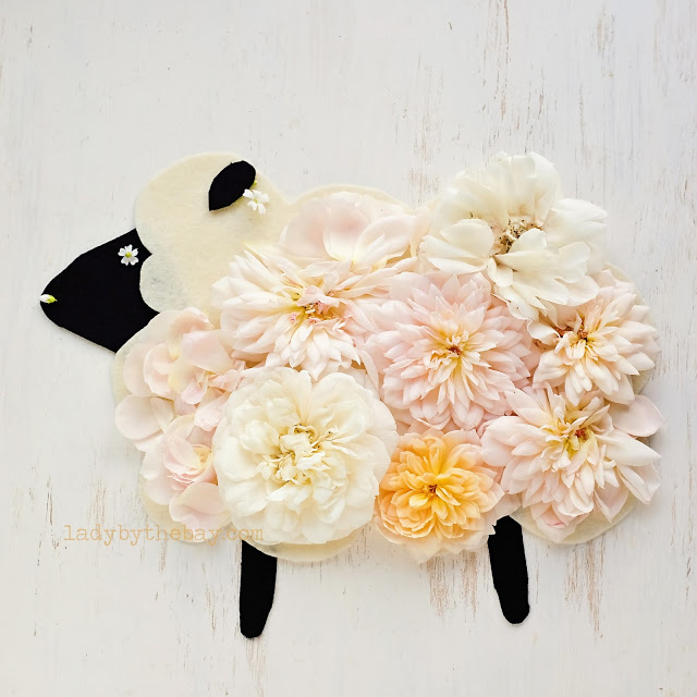 Lady By The Bay - Floral Sheep