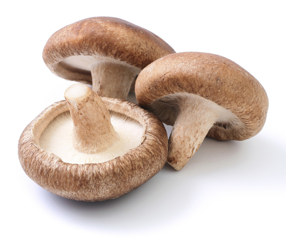 Mushroom  (Panax ginseng)