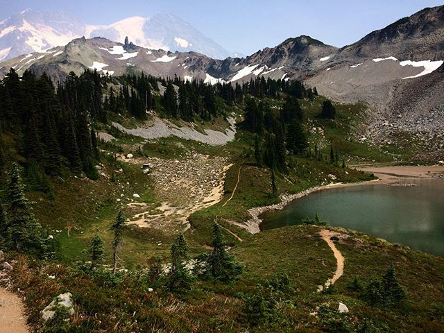 """The most luxuriant and the most extravagantly beautiful of all the alpine gardens I ever beheld in all my mountaintop wanderings."" - John Muir on Tahoma  Mountain (settler name: Mt. Rainier) Thx, @mimimckayart #decolonize #nativeland #territoryrunco #runnersofthewild #beetelite"