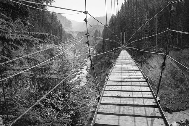 "Repost from @aspire.adventure.running: ""Tahoma Creek Suspension Bridge. Mile 8.9. Day One of the Wonderland Trail Circumnavigation. Don't. Look. Down."" #territoryrunco #runnersofthewild #beetelite #protectpubliclands"