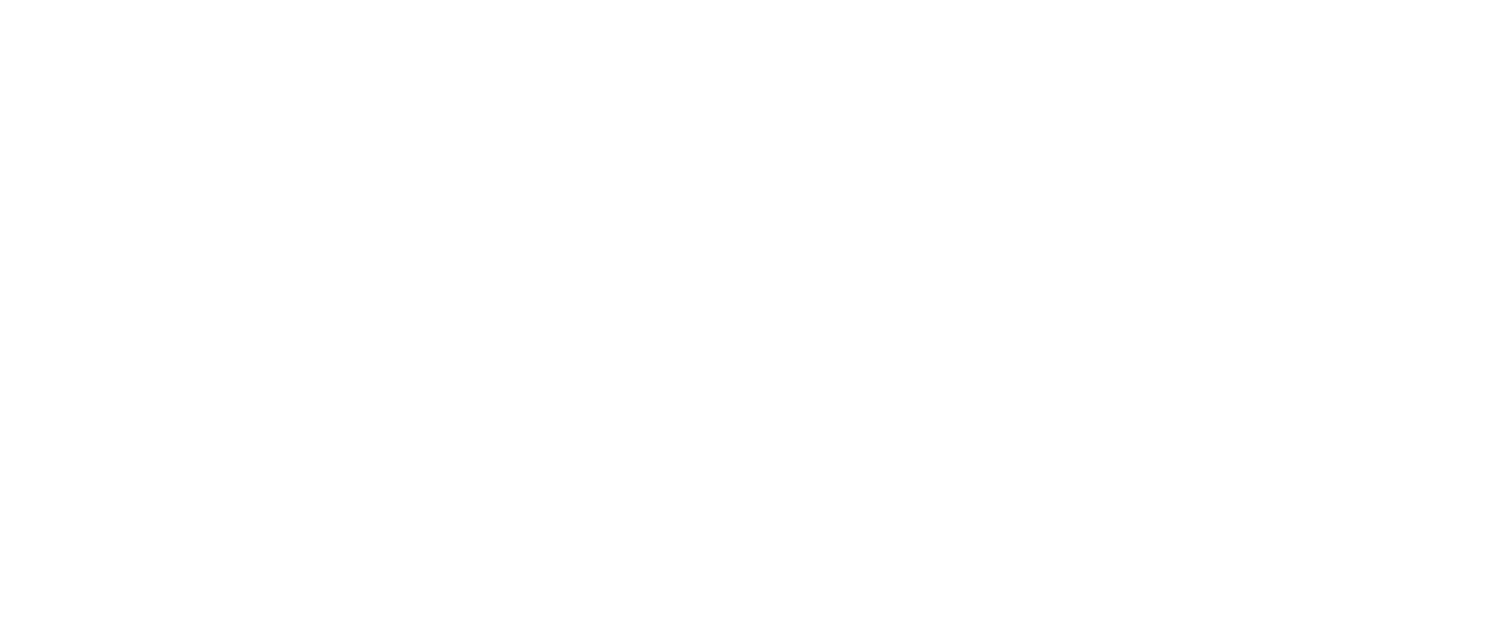 Burn Leadership Academy