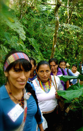 ©2011 Julie Wolfe Design-Ecuador3.jpg
