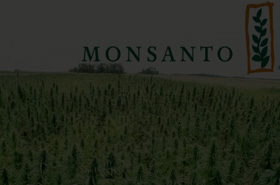 Monsanto - Breeder Management Database