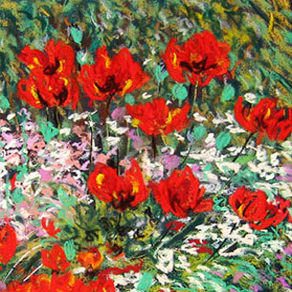 Wild-Poppy-Garden ss.jpg