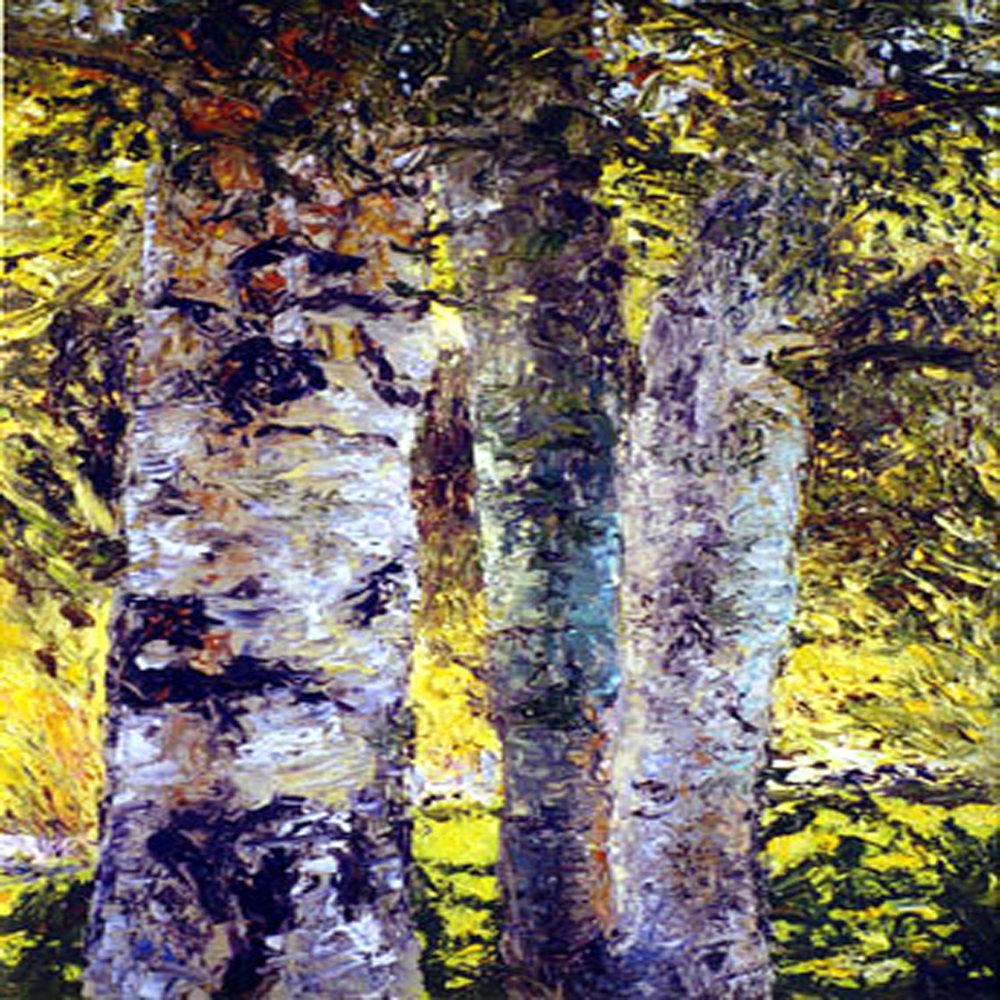 aspen-trunks ss.jpg