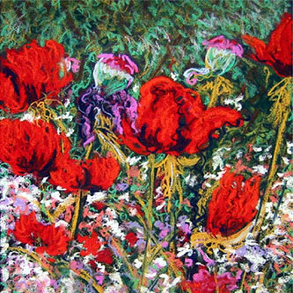 Wild-Poppies ss.jpg
