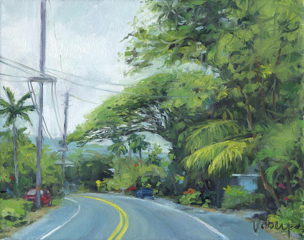 Ali'i Drive, Hawaii Island