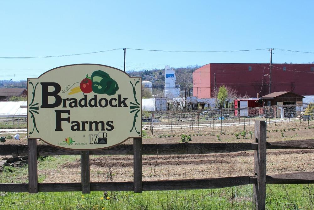 Braddock Fams