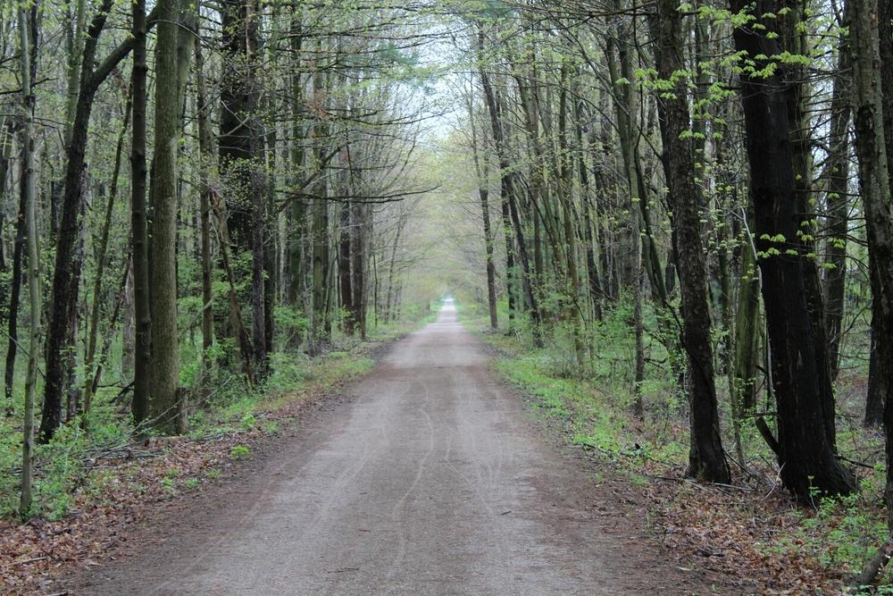 Kal-Haven Trail