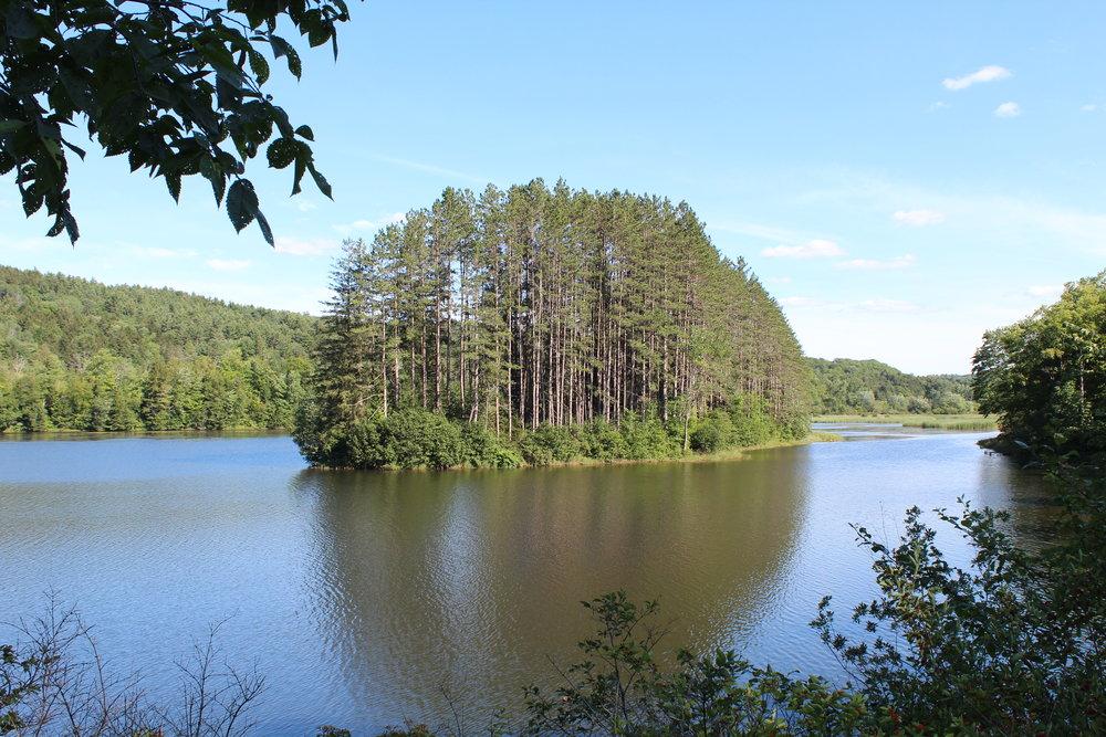 Little Elligo Pond in Vermont