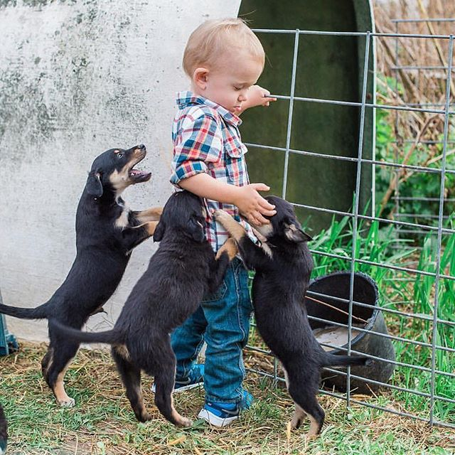 Just in case you needed a dose of happy for the night, here's a photo of my kid and some puppies. 😍