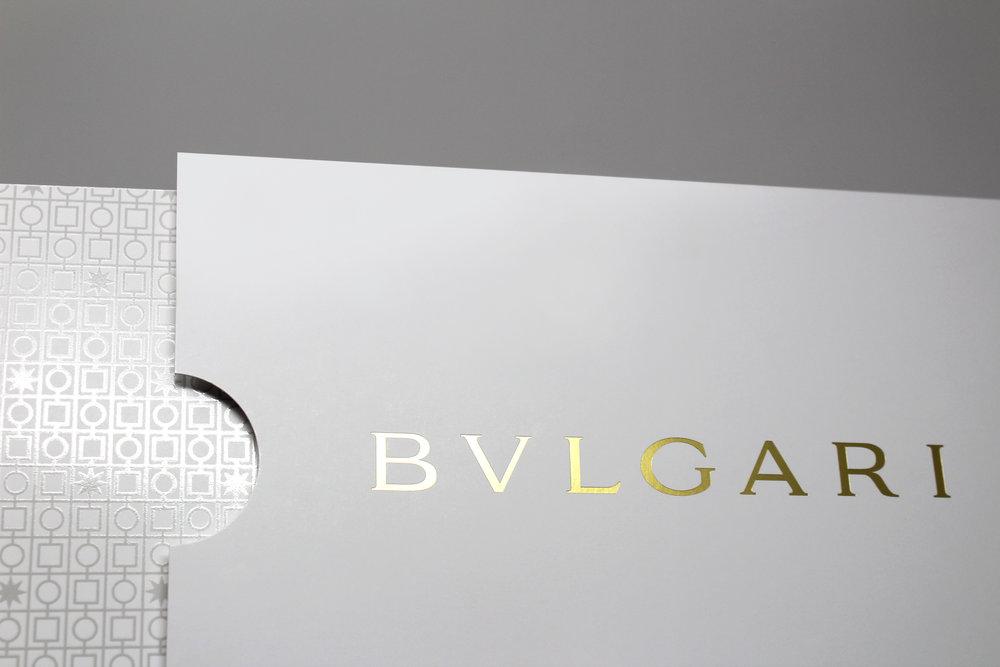 BV_Sleeve_05.jpg