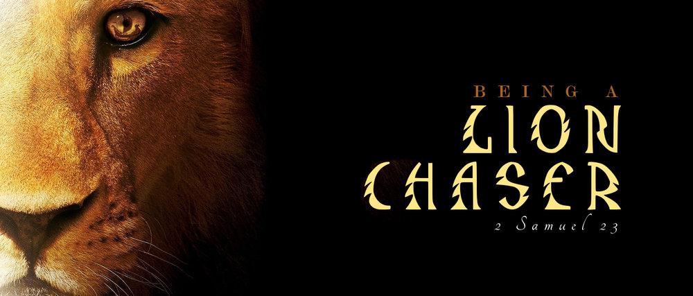 lionslider.jpg