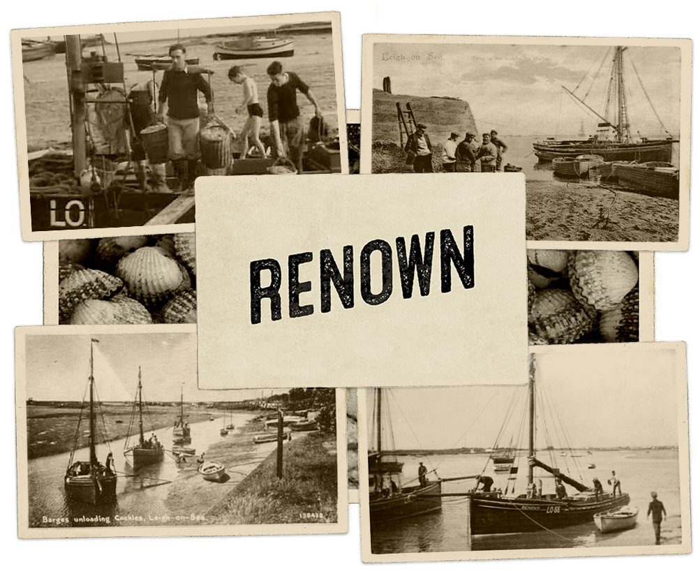 Renown Inspiration Images