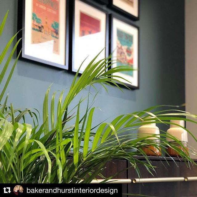 #Repost @bakerandhurstinteriordesign with @get_repost ・・・ Peeking through some greenery at this beautiful sideboard, glazed vases and colourful wall art, grouped together and carefully hung for maximum impact. #diningroom #openplanliving #colour #brass #mustard #greenery #indoorplants #familyspaces #sideboard #neilfendell #walldecor #diningroominspo #interiordesign #essexinteriors #essexinteriordesign #bakerandhurstinteriordesign #fendellposters