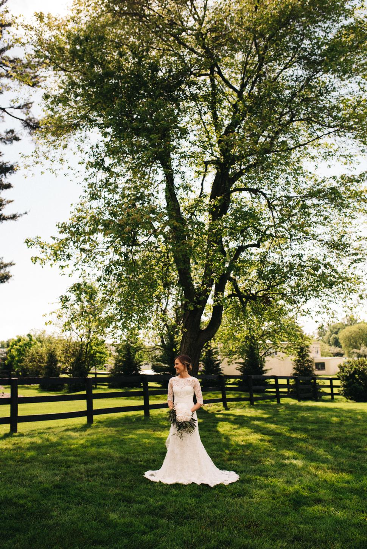 lily-bradley-blog-60.jpg