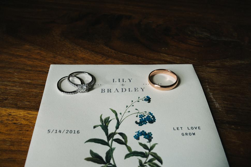 lily-bradley-blog-7.jpg