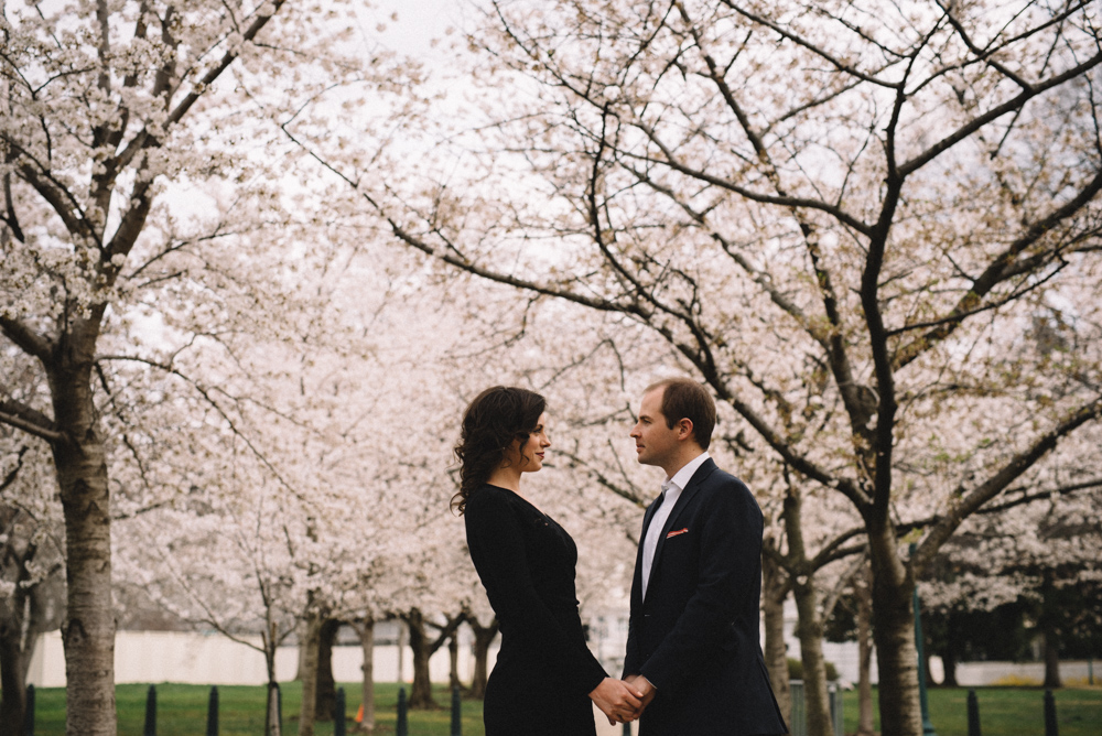 dc cherry blossoms engagement session-14.jpg
