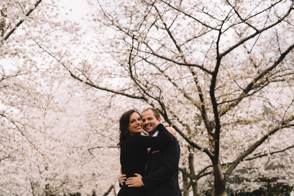 dc cherry blossoms engagement session-15.jpg