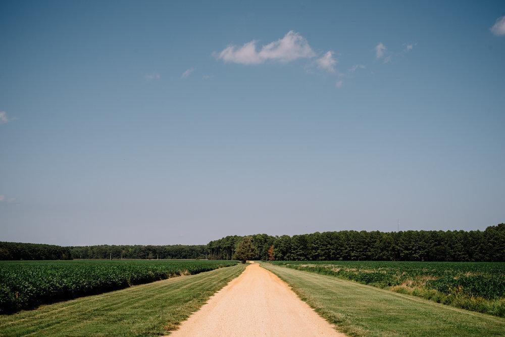 Woodlawn Farm Wedding Driveway Entrance