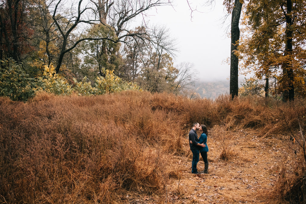 maryland heights engagement photo in a field