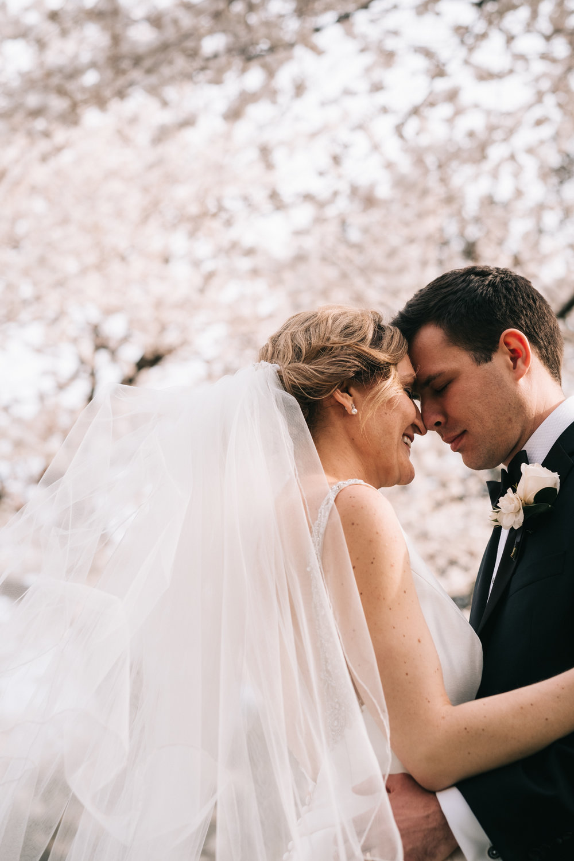 Washington DC Cherry Blossoms Wedding Portraits
