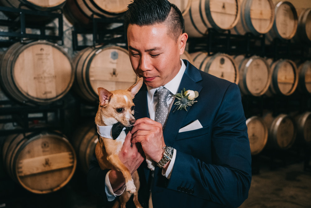 winery wedding dog ring bearer
