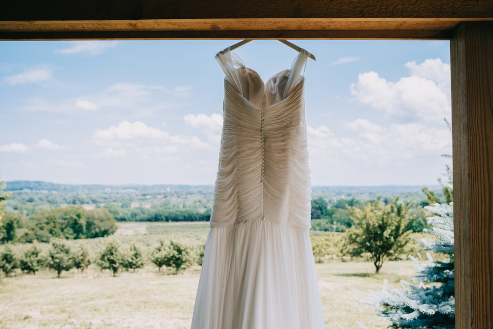 bluemont vineyard dress detail inspiration
