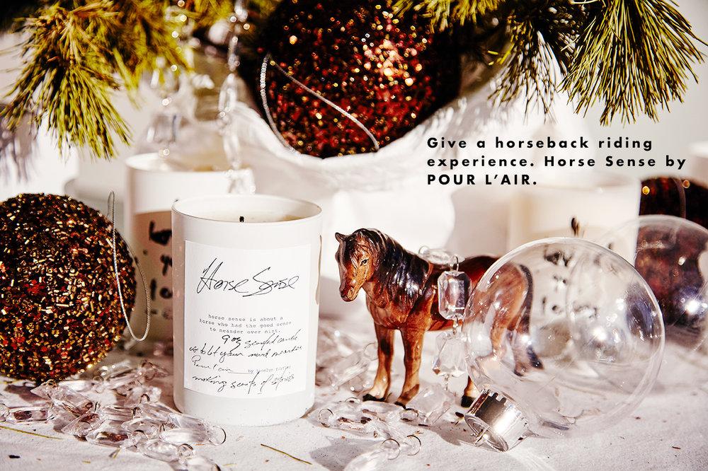 Pour-l'air-gift-Horse-Sense.jpg