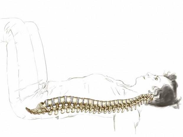 10a_enliven-your-spine-2.jpg